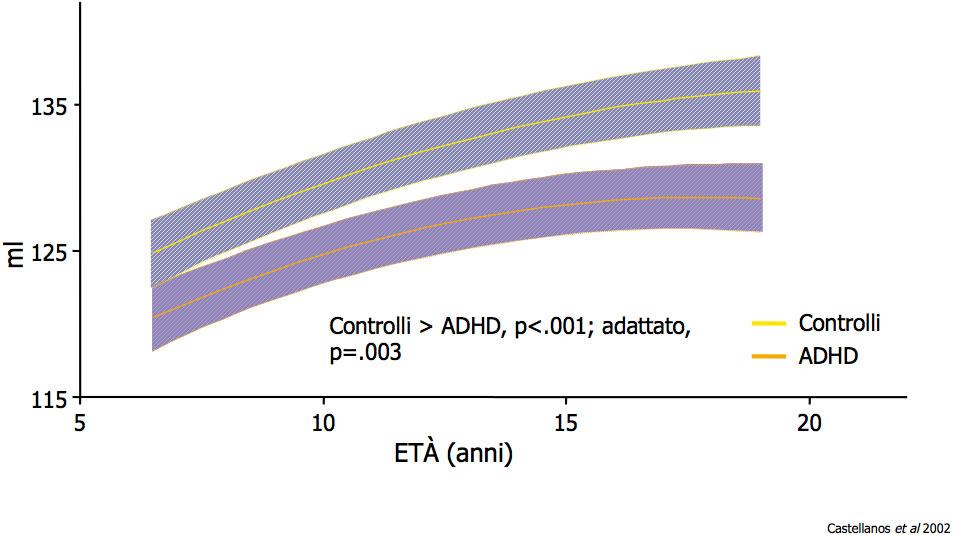 Controlli / ADHD